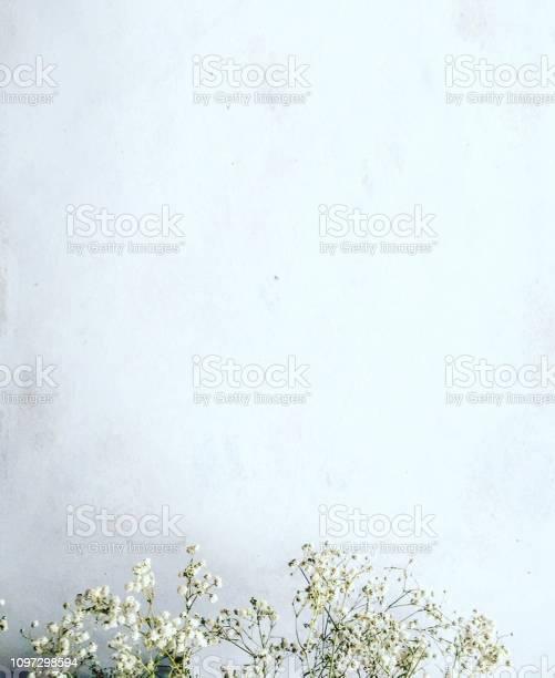 White flowers background picture id1097298594?b=1&k=6&m=1097298594&s=612x612&h=cerng8yd2kdps9bqoz8n0dljrpjpvrrunjfbj g64co=