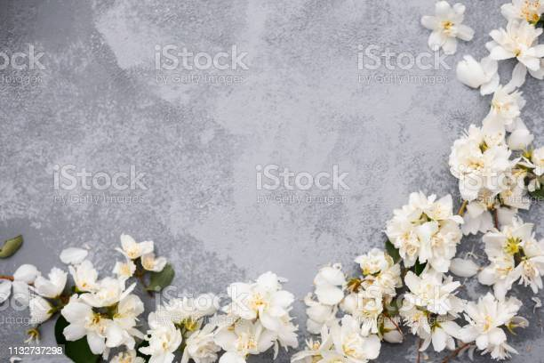 White flowers border flat lay spring concept mother day background picture id1132737298?b=1&k=6&m=1132737298&s=612x612&h= 7sffvagroil9wfc1kouei40htaoxrvsju bct7ne9g=