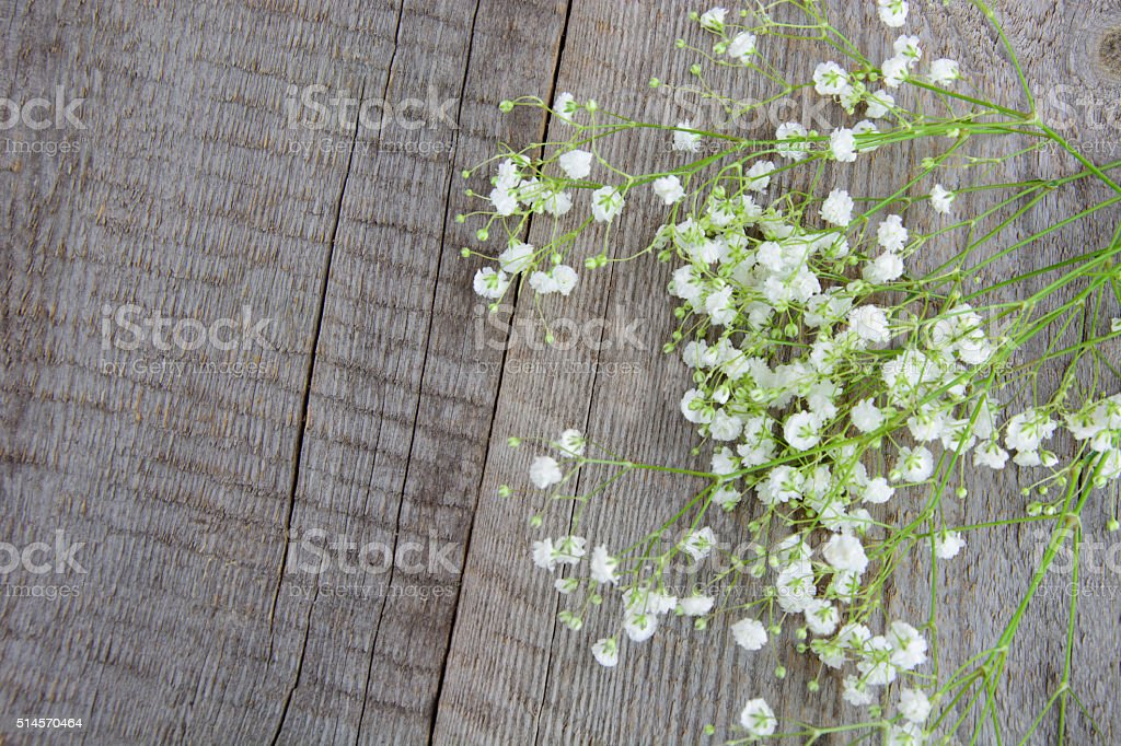 White flowers. Bouquet of gypsophila on a wooden background. stock photo