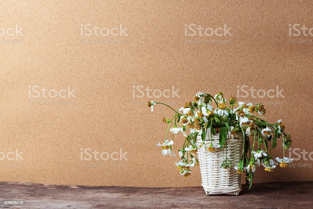white flowers in basket on wooden table stock photo