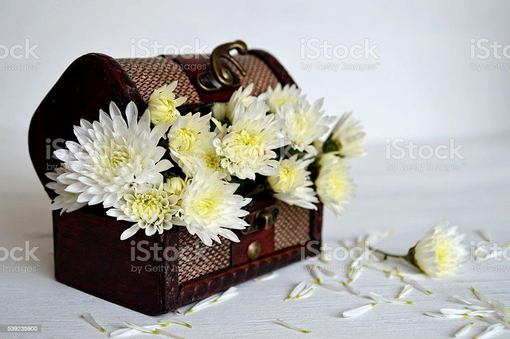 Flores blancas en Cofre del tesoro foto de stock libre de derechos