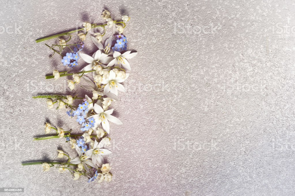 White flowers ornithogalum and lily of the valley and blue forget me not in a row on a silver cement background as a frame with copy space for your holiday congratulations text on a greeting card royalty-free stock photo
