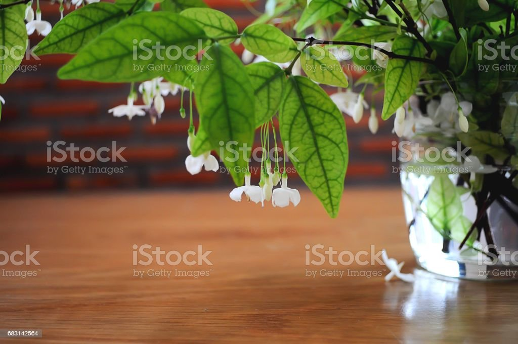 White flowers with green leaves in a glass. 免版稅 stock photo