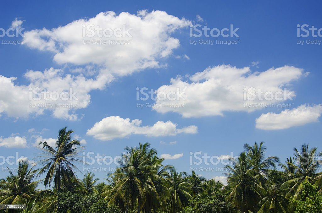 White fluffy clouds in blue sky. royalty-free stock photo