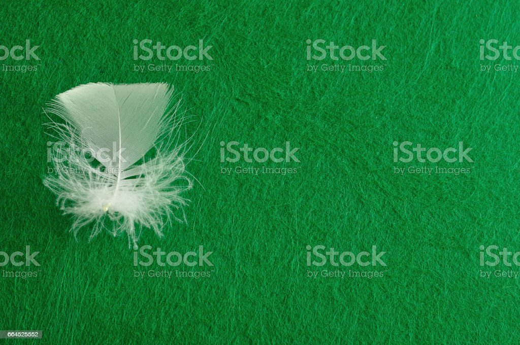 A white fluffy feather displayed on a colorful background royalty-free stock photo