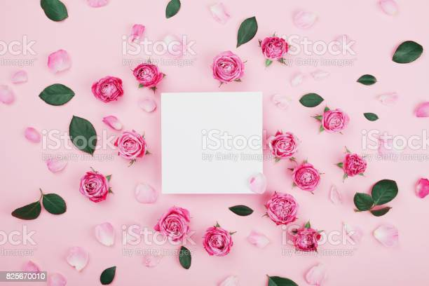 White frame blank pink rose flowers and petals for spa or wedding picture id825670010?b=1&k=6&m=825670010&s=612x612&h=cw3m3xxqo6hdjx4lf16co nu1l4dxgmeuf0k6c5kyb4=
