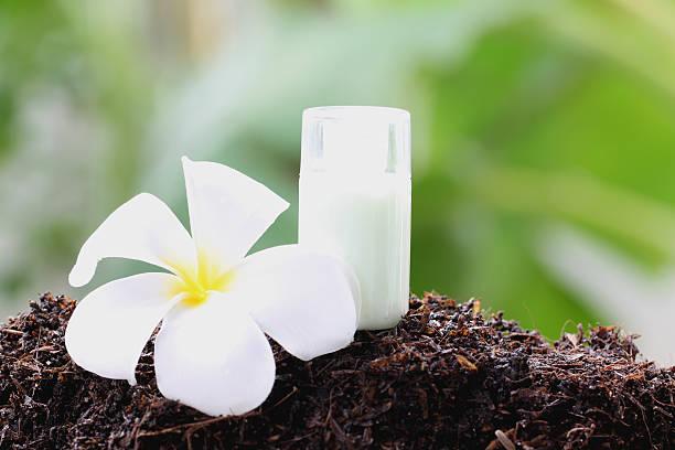 frangipani branco e perfume garrafa no chão. - foto de acervo