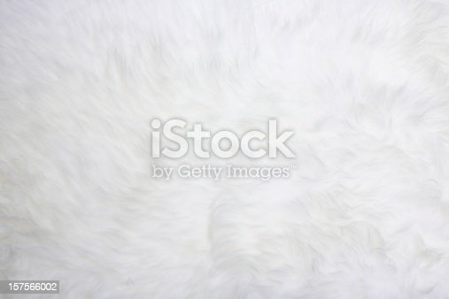 White fur useful for backgrounds or textures, good resolution