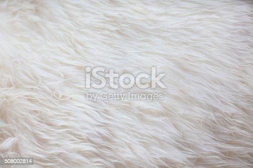 White fur texture background