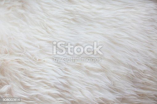 White Fur Texture Background Stock Photo & More Pictures ...