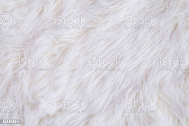 White fur texture picture id638893344?b=1&k=6&m=638893344&s=612x612&h=zfq1mn6ssbrwqfz dcoj4f9tkpduphdqllc c8adcqs=