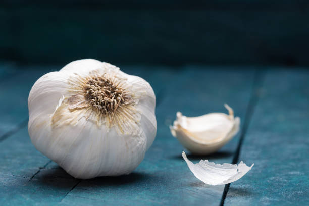 white garlic on petrol-colored wooden background - garlic stock photos and pictures