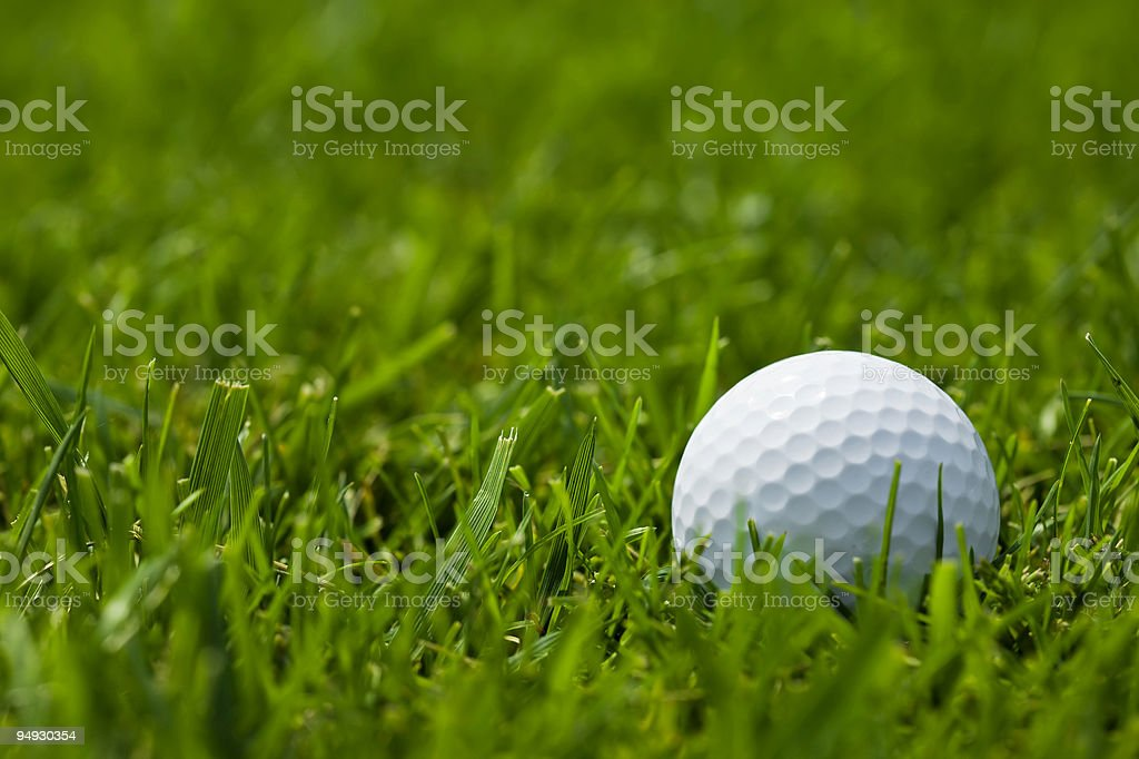 white golf ball on fairway close up stock photo