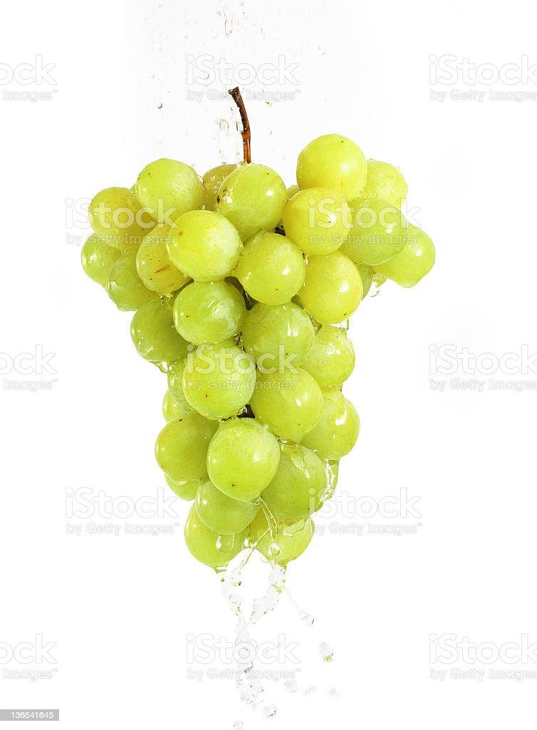 White grape cluster royalty-free stock photo