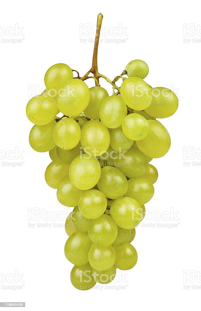 white grape stock photo