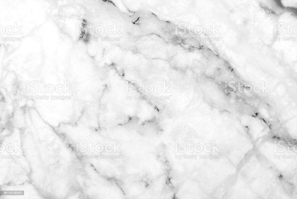White grey marble texture