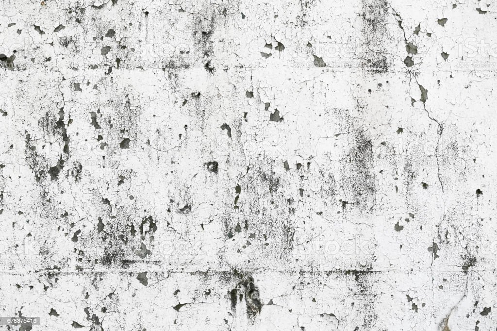 White grunge concrete wall texture vector art illustration