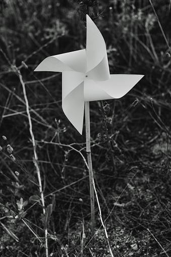 White handmade diy paper pinwheel toy in the field