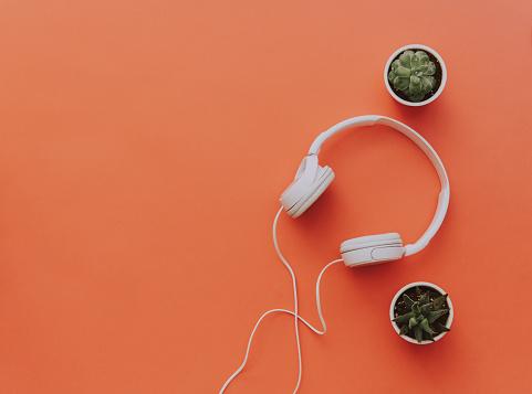 istock White headphones on orange background with cactus. Minimal blogger or music background 924617538