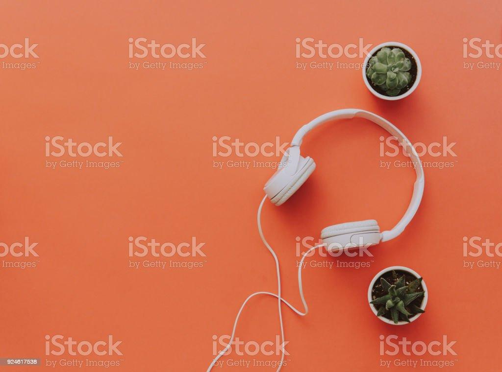 White headphones on orange background with cactus. Minimal blogger or music background stock photo