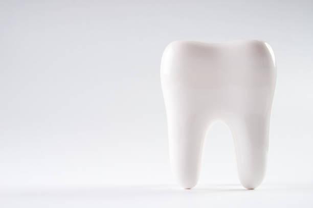 分離與副本空間的白色背景上的白色健康人類牙齒。圖像檔