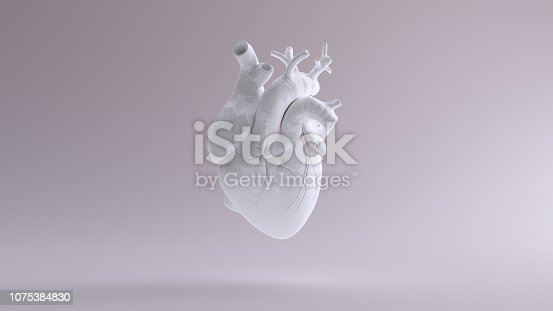 istock White Heart Anatomical 1075384830