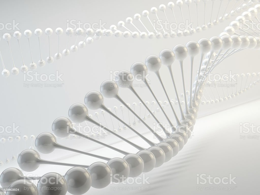 White helix DNA strands on a white background royalty-free stock photo
