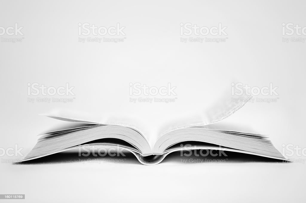 White Holy Bible royalty-free stock photo