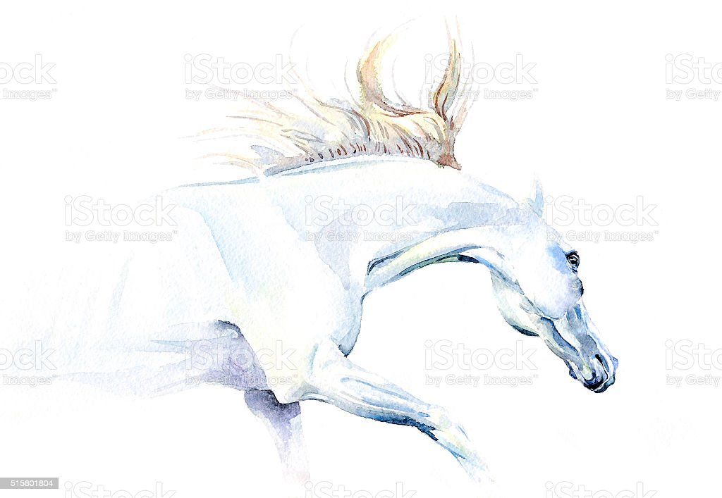 White Horse In Watercolor Stock Photo Download Image Now Istock