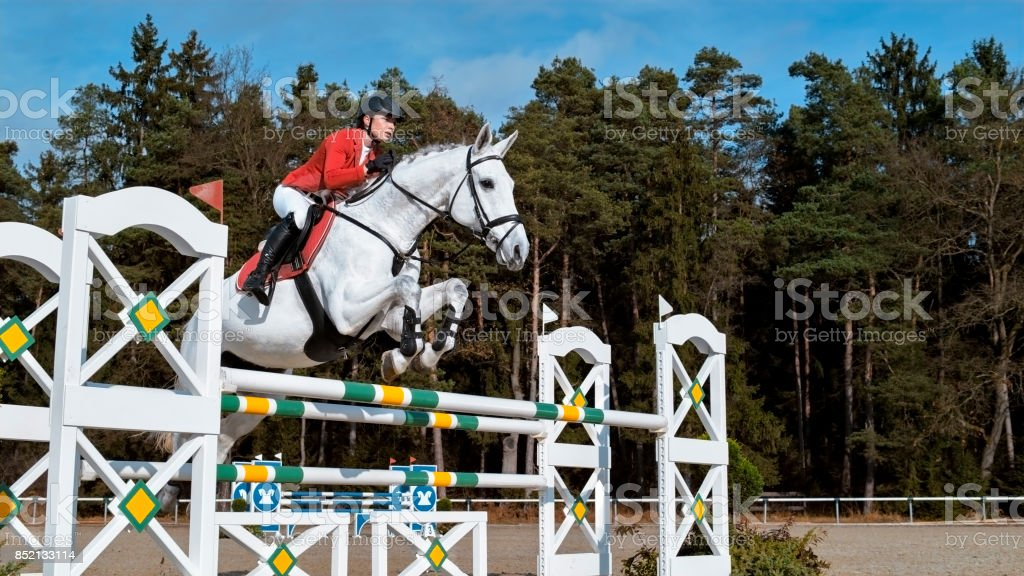 White Horse Jumping An Oxer With His Rider Stock Photo Download Image Now Istock