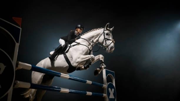 vita hästen hoppa över järnväg i arena - hästhoppning bildbanksfoton och bilder