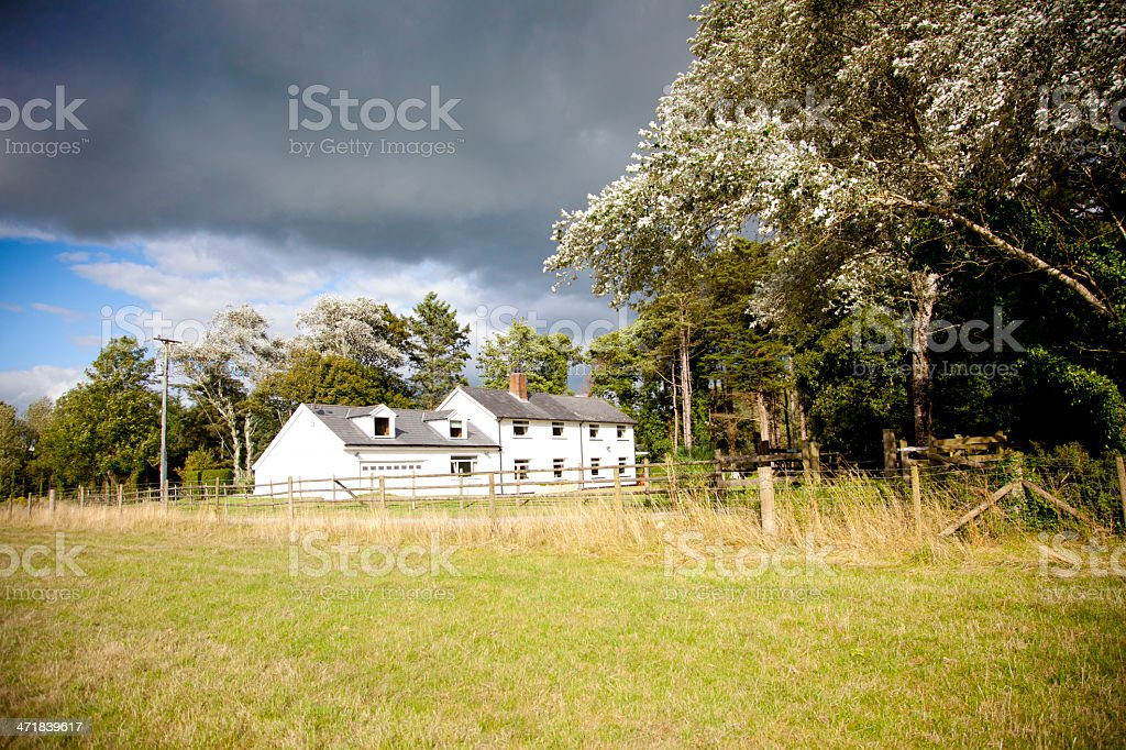 white house in woodland setting stock photo