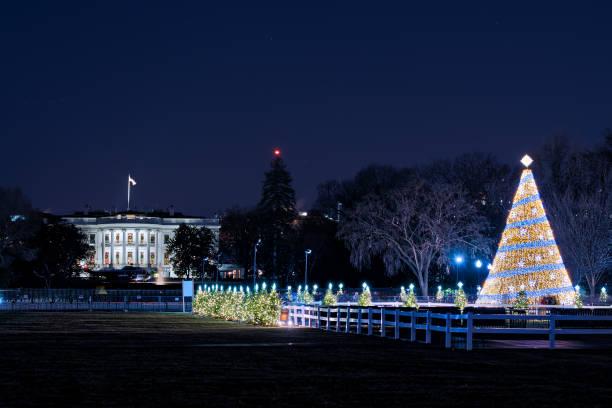 white house mit beleuchteter weihnachtsbaum vor silvester mit ornament, beleuchtung in der dunklen stunde nacht mit vielen menschen zu fuß durch zaun - dunkle flecken entferner stock-fotos und bilder