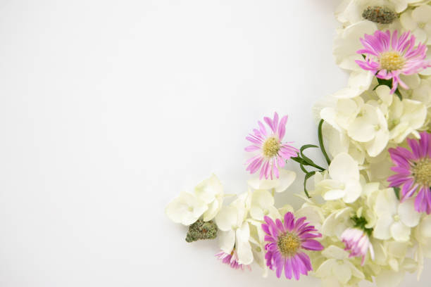 White Hydrangea and Purple Daisy Cannabis Foral Bouquet for Marijuana Product Background Frame - Top Down Right stock photo