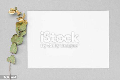 istock White invitation card mockup with a dried eucalyptus decoration on a neutral table. 5x7 ratio, similar to A6, A5. minimalistic design 1303610205