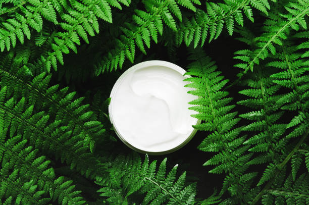 White jar of face cream on a background of forest herbs fern dark picture id1152477220?b=1&k=6&m=1152477220&s=612x612&w=0&h=zuuvxpmqmkwl8t6la 4udhdzcylqu j  hbc ghzmli=