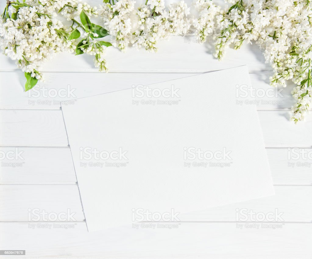 White Lilac Flowers Sketch Paper Sheet Floral Flat Lay Stock Photo
