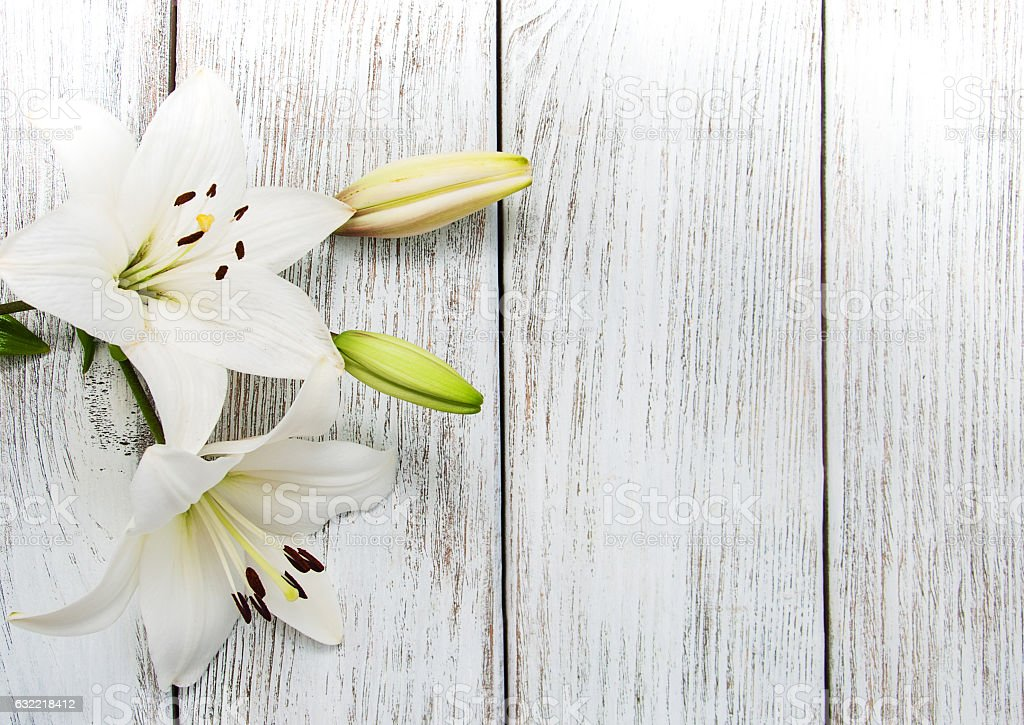 White  lilies on a wooden table stock photo