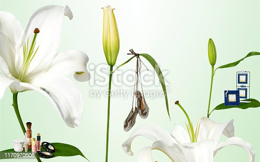 Still life shot of objects attached to white Lillies
