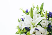 istock White lily flower 1263509856