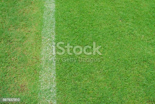 931661614 istock photo white line on green grass of football yard stadium 597932910