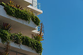 White modern building decorated with green tropical plants. Sustainable ecological living, urban garden concept