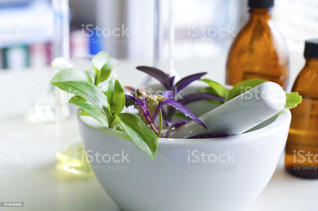 A white mortar and pestle with fresh herbs inside royalty-free stock photo