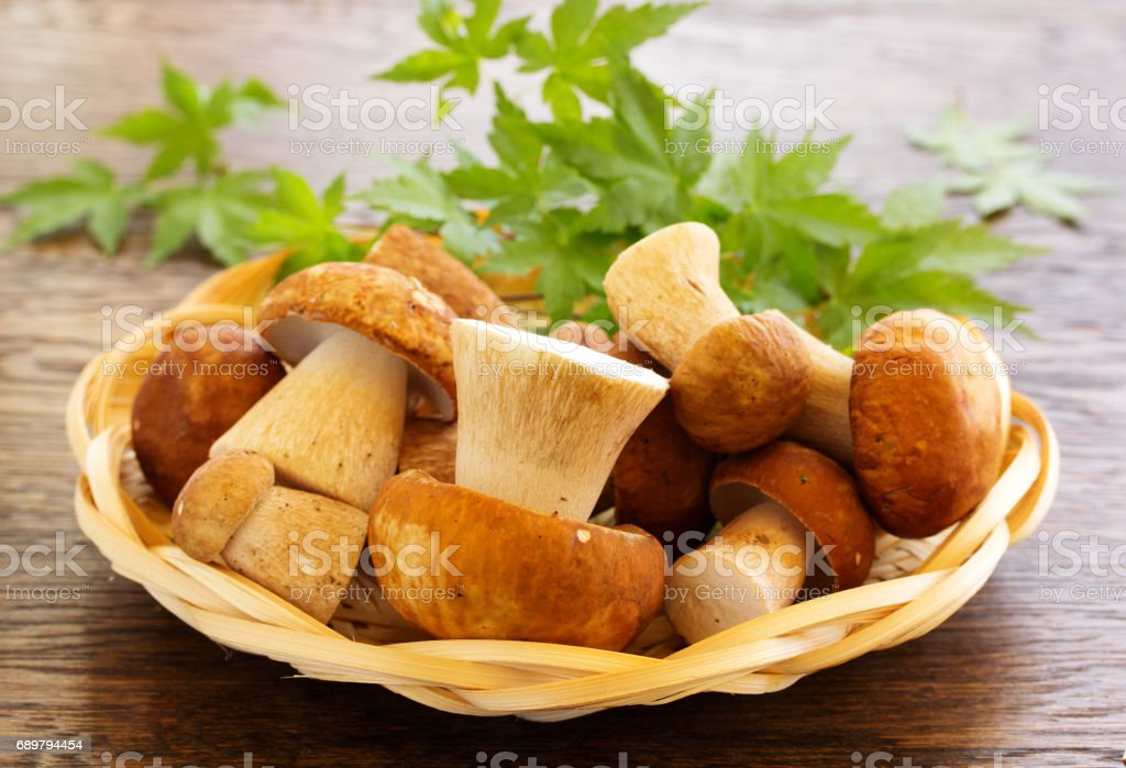 White mushrooms in the basket. stock photo