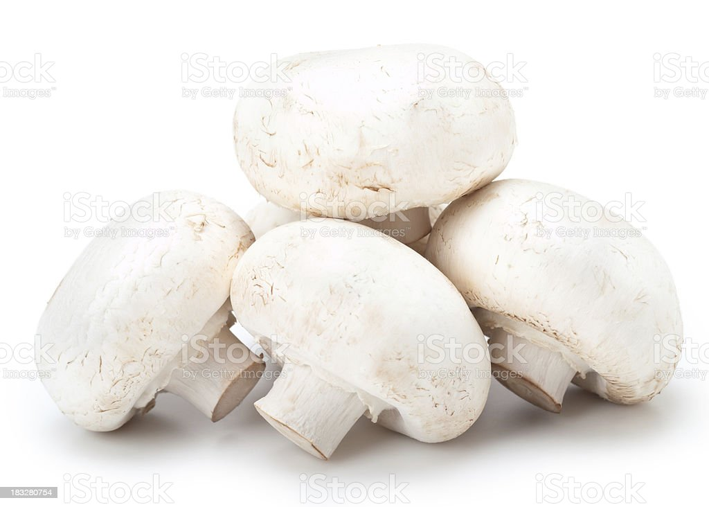 White Mushrooms stock photo