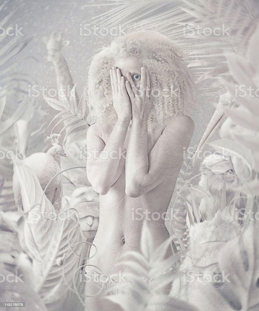 White night in jungle stock photo