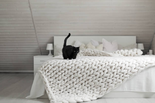 White nordic bedroom interior with knit plaid stock photo
