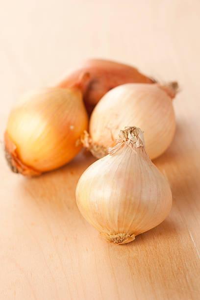 white onion stock photo
