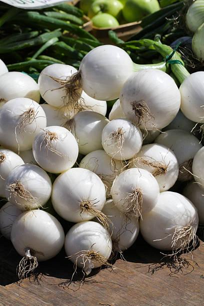 white zwiebeln und weiße perlzwiebeln mit grün-tops - perlzwiebeln stock-fotos und bilder
