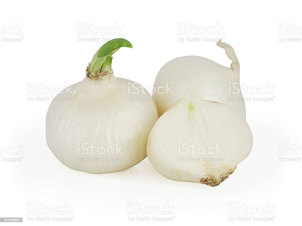 White onions royalty-free stock photo
